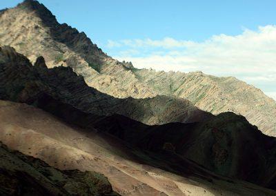 Himalayan-Dragon-37