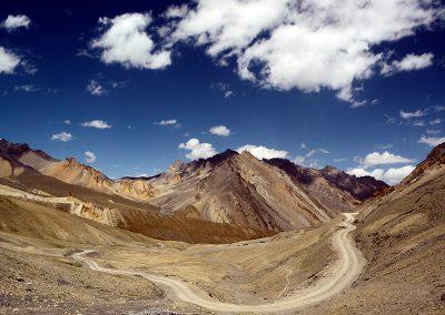 Himalayan-Dragon-63